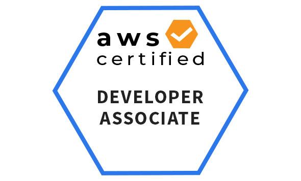 aws certified developer associate official study guide pdf download