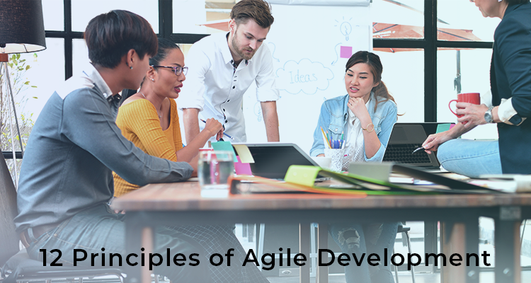 12 principles of agile development