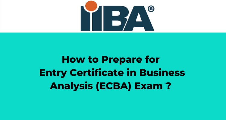 Entry Certificate in Business Analysis (ECBA) Exam