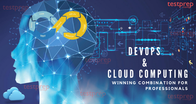 DevOps and Cloud Computing: A winning combination for Professionals
