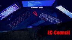 Computer Hacking Forensic Investigator (CHFI) 312-49 Exam