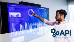 Risk Based Inspection Professional (API 580)