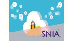 SNIA Certified Storage Architect (SCSA) (S10-310)